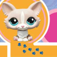 LITTLEST PET SHOP BLYTHE and Corgi Maze