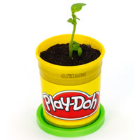 PLAY-DOH Potted Plant Activity