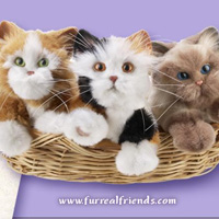 FurReal Friends: KITTENS