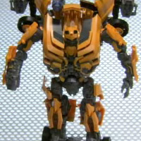 LEADER BUMBLEBEE - Instructional Video
