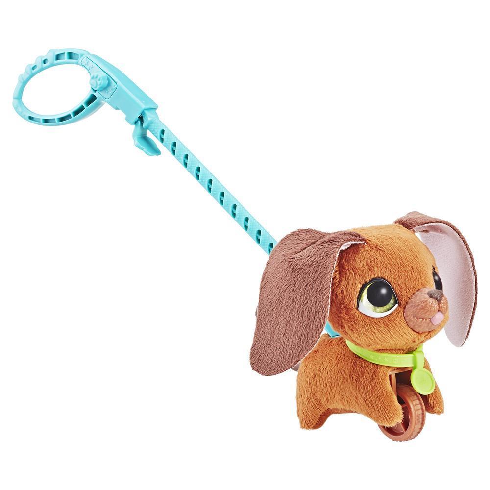 FRR Walkalots malý pes