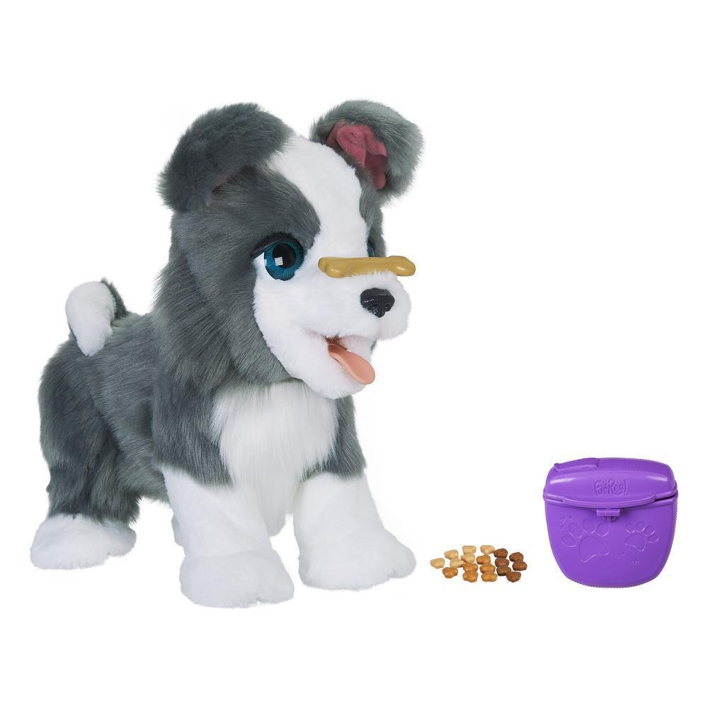 furReal Ricky, the Trick-Lovin' Pup