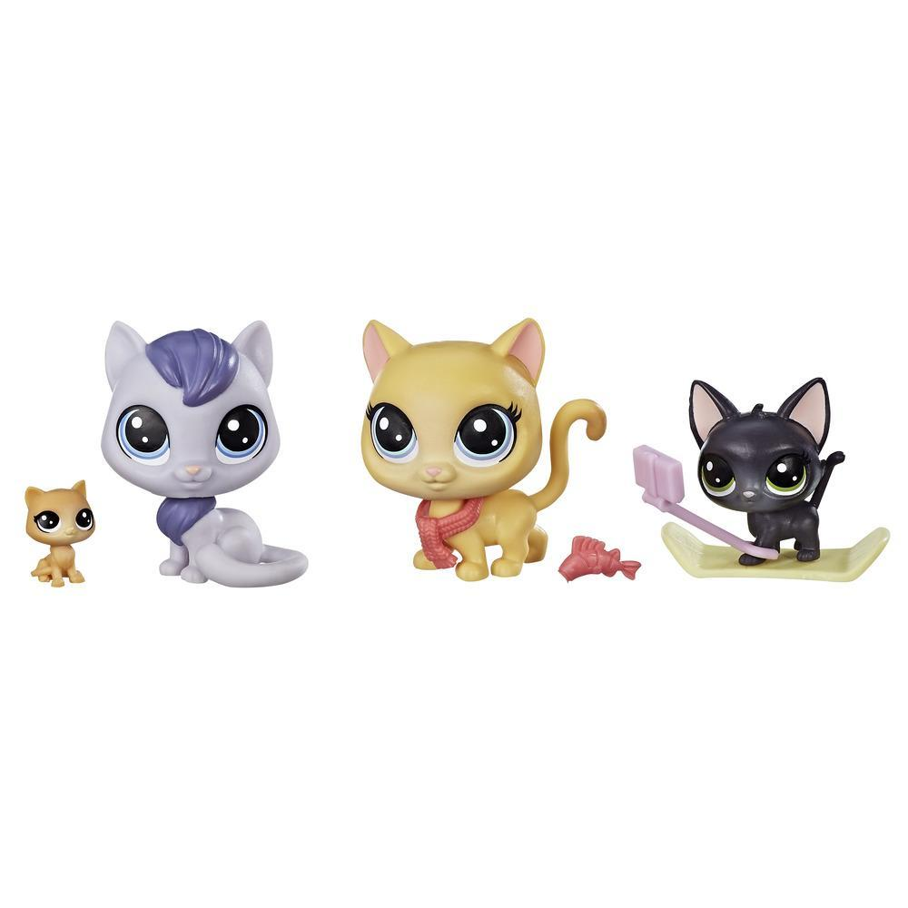 Littlest Pet Shop Snowboarding Kitty Crew