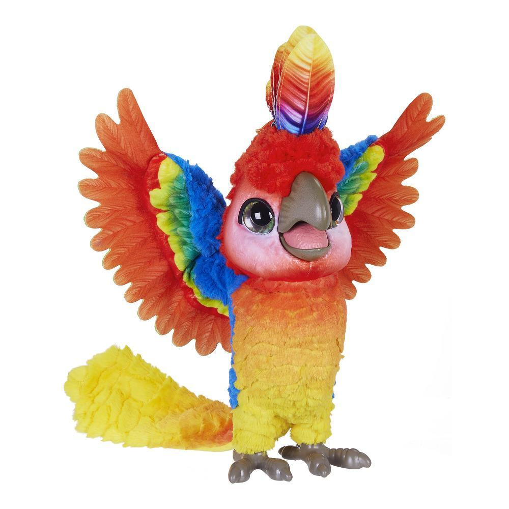 SHOW-COCO, mon perroquet star