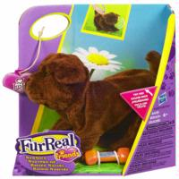 FURREAL FRIENDS Assortiment 1 de Nouveau-nés